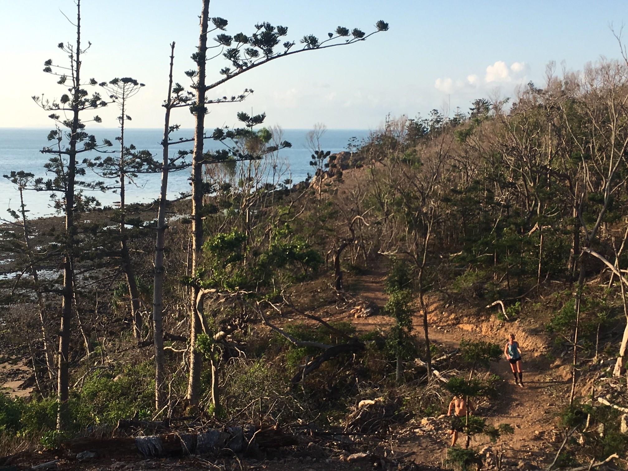 Hamilton island, climbing up