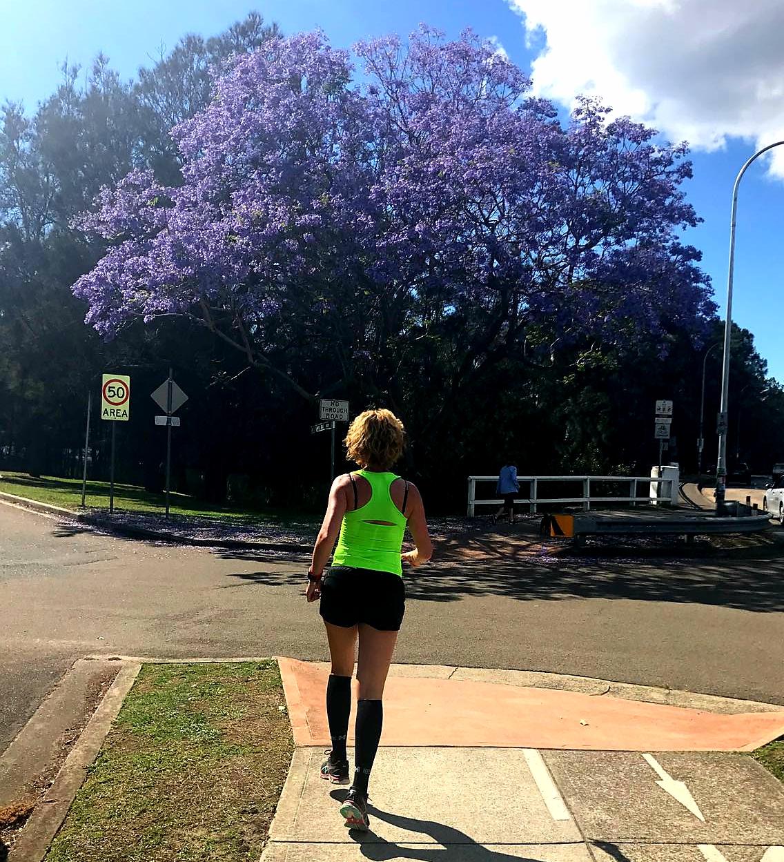Hardlopen in Manly, paarse jacaranda