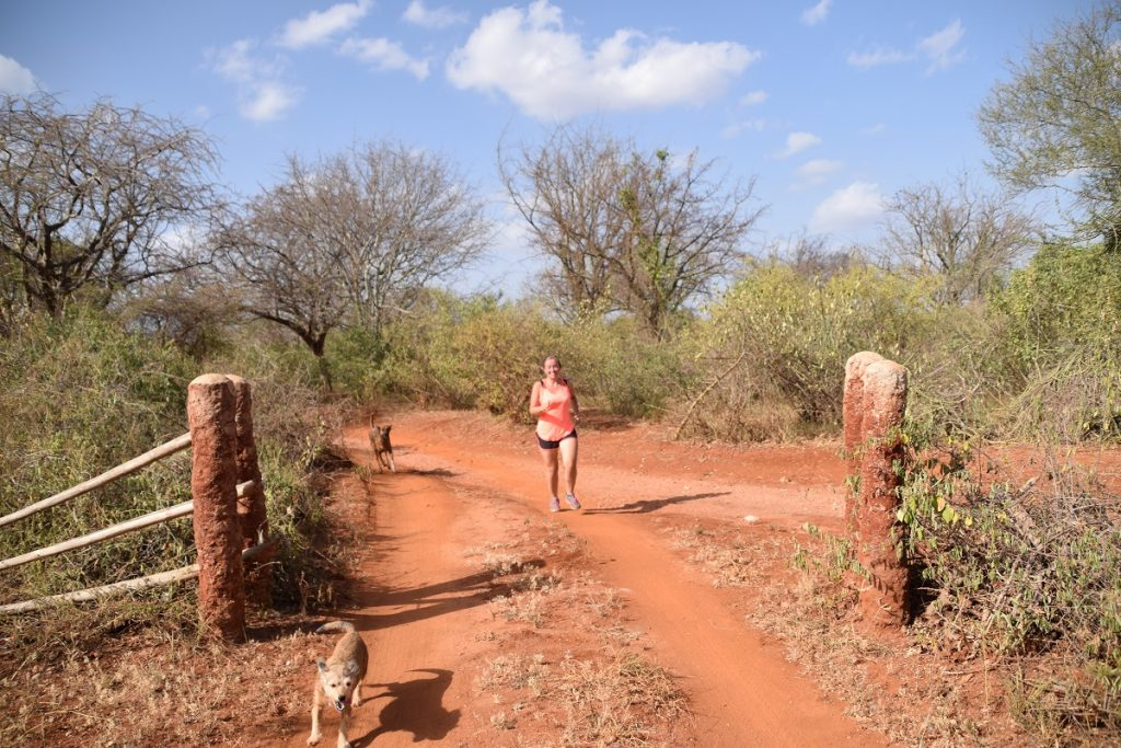 Hardlopen in Kenia bij Tsavo East en Tsavo West National Park
