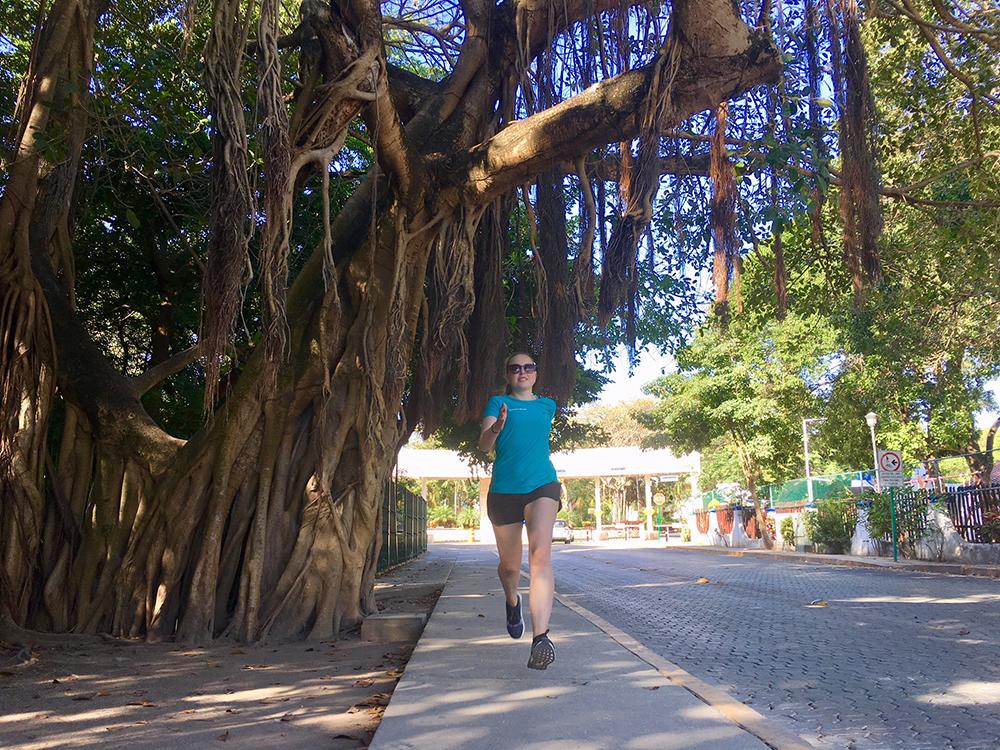 Hardlopen in Mexico Playa del Carmen lianenbomen