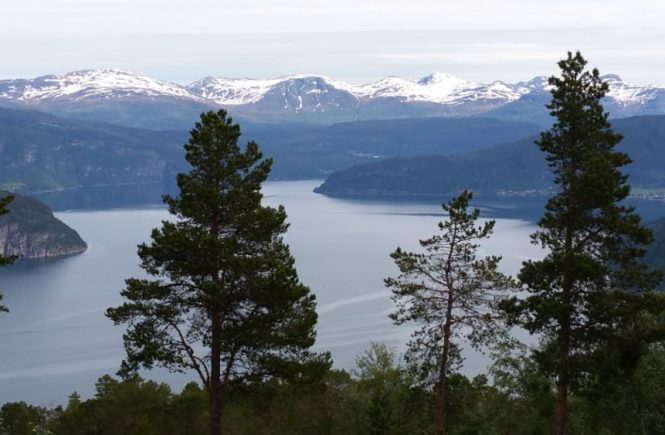 5 redenen om reizen en rennen te combineren - Fjord Noorwegen