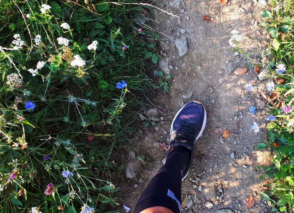 Hardlopen in Pohorje - fleurige bloemetjes