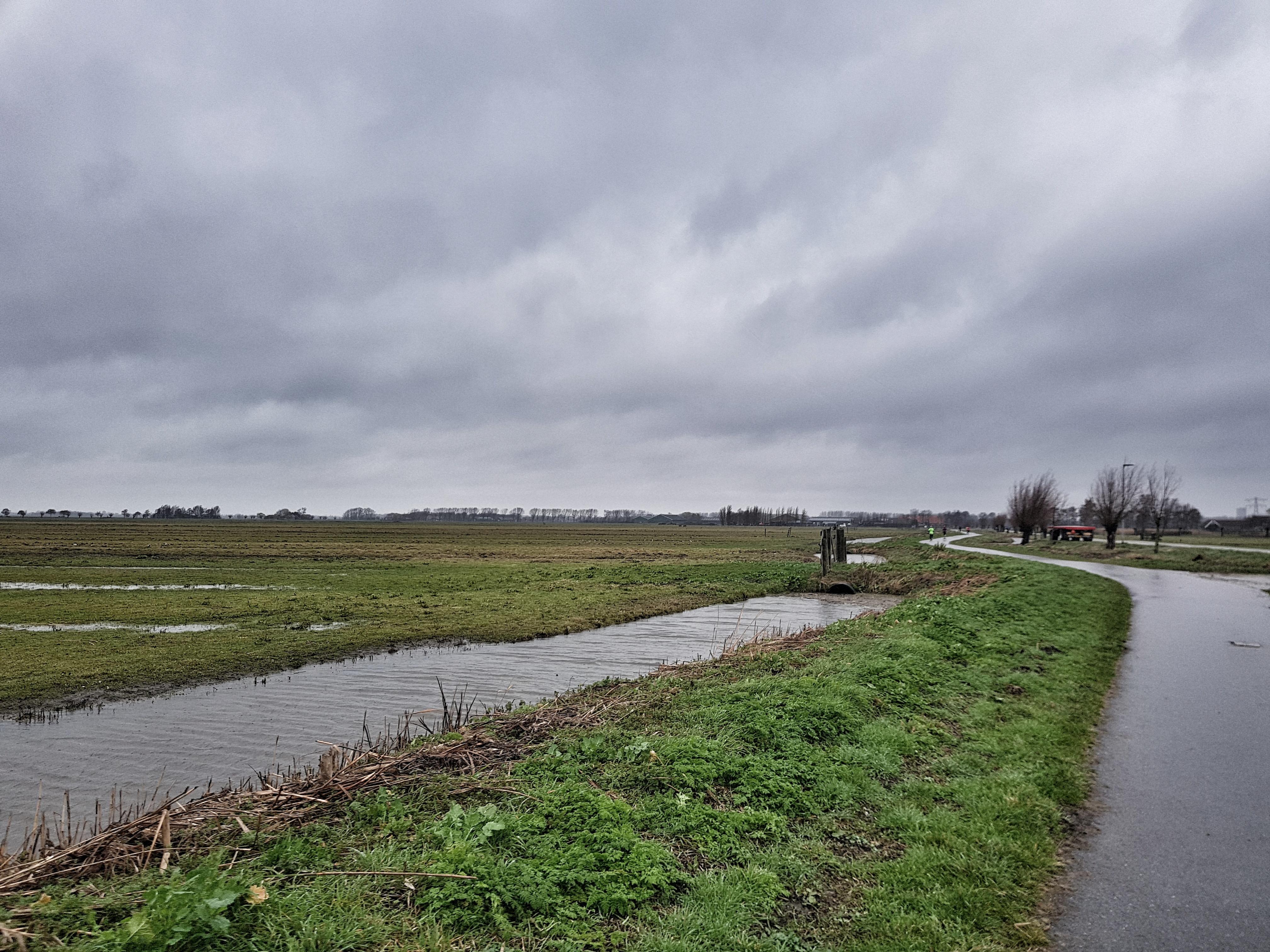 Schiedamloop polder