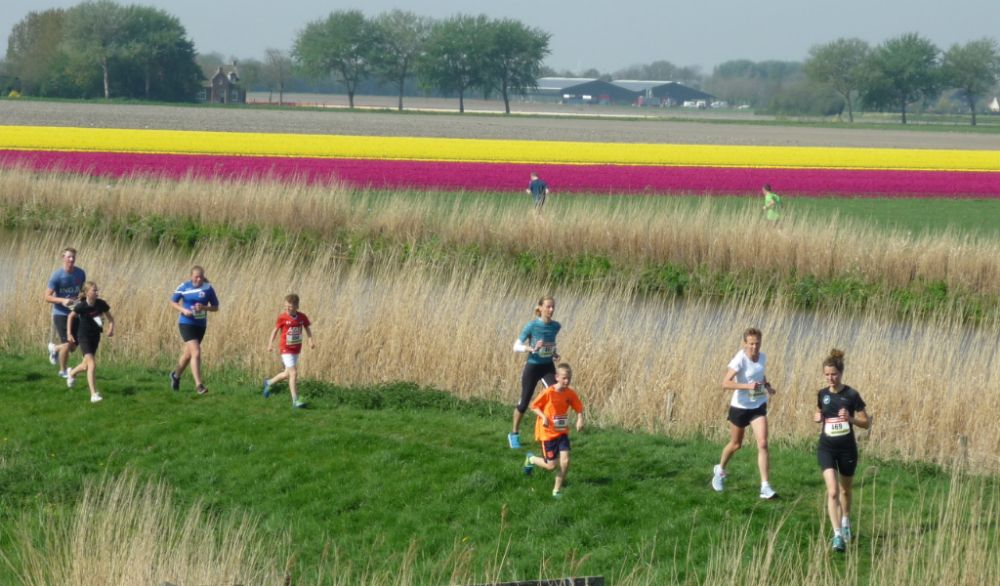 Paaspolderloop - tulpenvelden